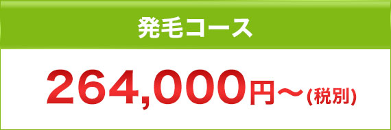発毛コース 264,000円~